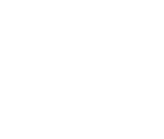 The Travel Web Design Agency Logo Type
