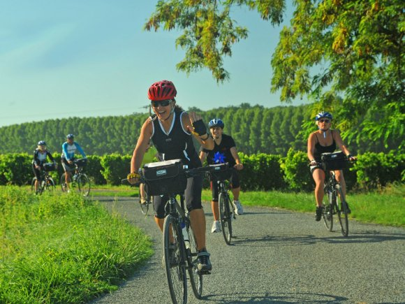 French Cycling 1